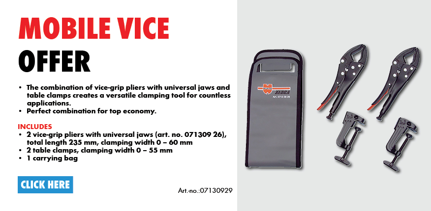 Mobile Vice Offer